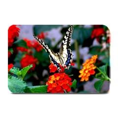 Butterfly Flowers 1 Plate Mats