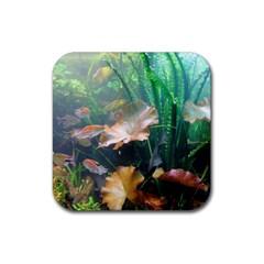 Marine Life Rubber Coaster (square)