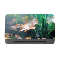 Marine Life Memory Card Reader With Cf