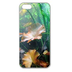 Marine Life Apple Seamless Iphone 5 Case (clear)
