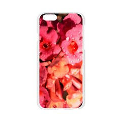 Dsc 0117666565 Apple Seamless iPhone 6/6S Case (Transparent)