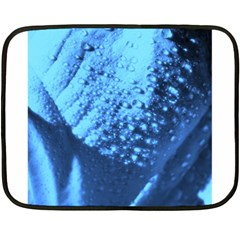 Dsc 014976 Double Sided Fleece Blanket (mini)