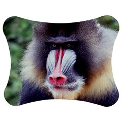 5000x5000 Mandrill Centred Jigsaw Puzzle Photo Stand (Bow)