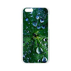 Morning Dew Apple Seamless iPhone 6/6S Case (Transparent)