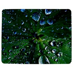 Morning Dew Jigsaw Puzzle Photo Stand (Rectangular)