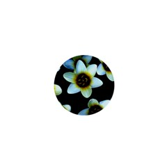 Light Blue Flowers On A Black Background 1  Mini Buttons
