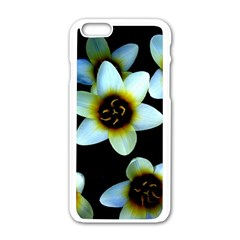 Light Blue Flowers On A Black Background Apple Iphone 6/6s White Enamel Case