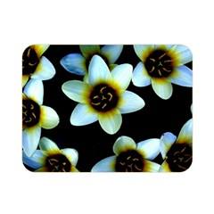 Light Blue Flowers On A Black Background Double Sided Flano Blanket (mini)