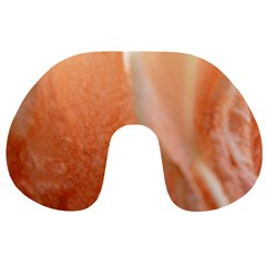 Floating Peach Travel Neck Pillows