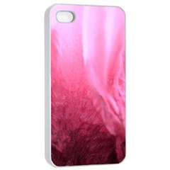 Floating Pink Apple Iphone 4/4s Seamless Case (white)