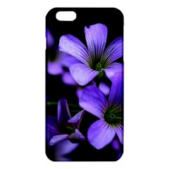 Springtime Flower Design iPhone 6 Plus/6S Plus TPU Case