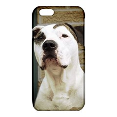 Pit Bull T-Bone 2015/05/25 iPhone 6/6S TPU Case