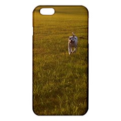 Pit Bull T-Bone iPhone 6 Plus/6S Plus TPU Case