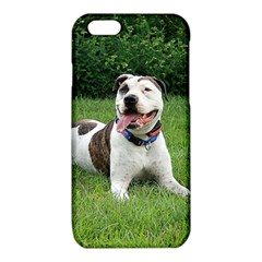 Pit Bull T Bone iPhone 6/6S TPU Case