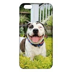 Pit Bull T Bone iPhone 6 Plus/6S Plus TPU Case