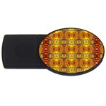 Roof555 USB Flash Drive Oval (4 GB)  Front