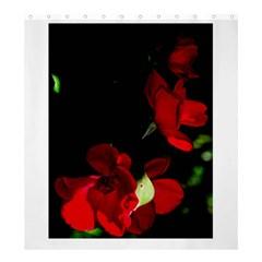 Roses 1 Shower Curtain 66  X 72  (large)