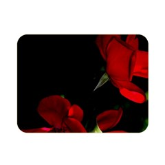 Roses 1 Double Sided Flano Blanket (mini)