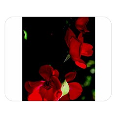Roses 1 Double Sided Flano Blanket (large)