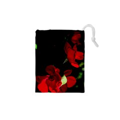Roses 1 Drawstring Pouches (XS)