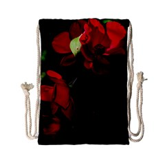 Roses 4 Drawstring Bag (small)