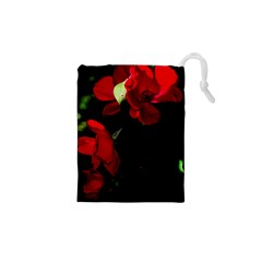 Roses 4 Drawstring Pouches (XS)