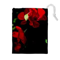 Roses 4 Drawstring Pouches (Extra Large)