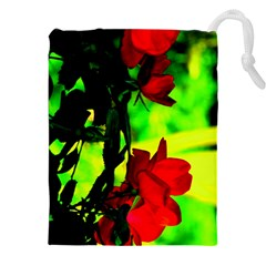Red Roses and Bright Green 1 Drawstring Pouches (XXL)