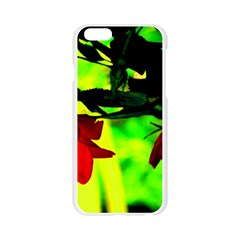 Red Roses and Bright Green 2 Apple Seamless iPhone 6/6S Case (Transparent)