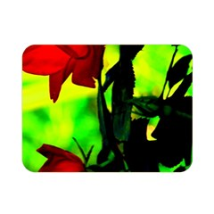 Red Roses And Bright Green 3 Double Sided Flano Blanket (mini)