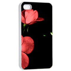 Mauve Roses 2 Apple Iphone 4/4s Seamless Case (white)