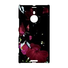 Mauve Pink Roses Nokia Lumia 1520