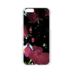 Mauve Pink Roses Apple Seamless iPhone 6/6S Case (Transparent)