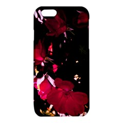 Pink Roses iPhone 6/6S TPU Case