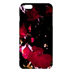 Pink Roses Iphone 6 Plus/6s Plus Tpu Case