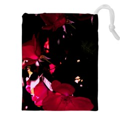 Pink Roses Drawstring Pouches (XXL)