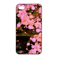 Little Mauve Flowers Apple Iphone 4/4s Seamless Case (black)