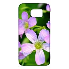 Little Purple Flowers 2 Galaxy S6