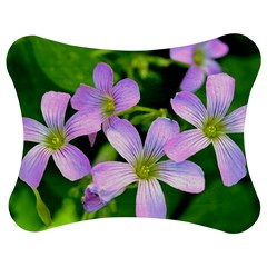 Little Purple Flowers 2 Jigsaw Puzzle Photo Stand (Bow)