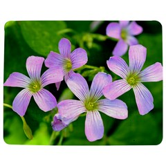 Little Purple Flowers 2 Jigsaw Puzzle Photo Stand (rectangular)