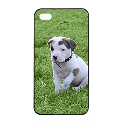 Pit Bull T Bone Puppy Apple Iphone 4/4s Seamless Case (black)