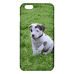 Pit Bull T Bone Puppy iPhone 6 Plus/6S Plus TPU Case