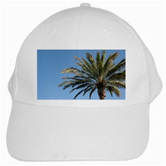 Tropical Palm Tree  White Cap