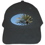 Tropical Palm Tree  Black Cap Front