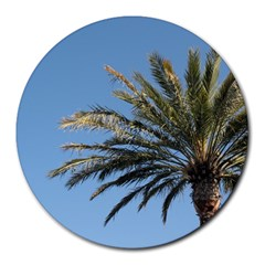 Tropical Palm Tree  Round Mousepads