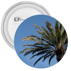 Tropical Palm Tree  3  Buttons
