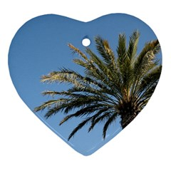Tropical Palm Tree  Ornament (heart)