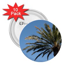 Tropical Palm Tree  2 25  Buttons (10 Pack)