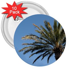 Tropical Palm Tree  3  Buttons (10 Pack)