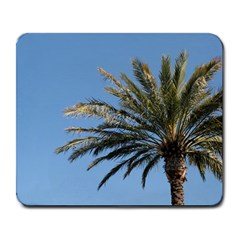 Tropical Palm Tree  Large Mousepads